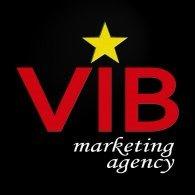 viblogo
