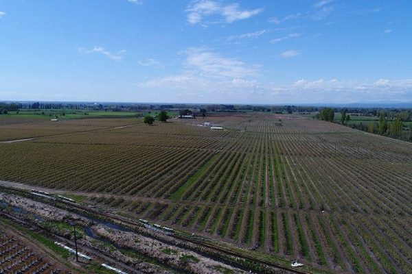 GenericDroneAgriculture